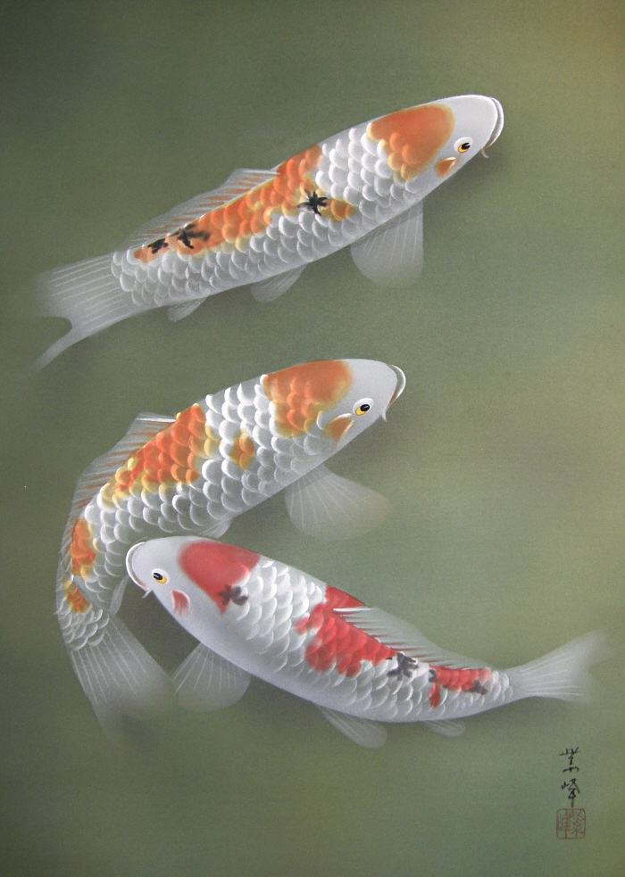 Ns 50009 swimming carp japanese brand new kakejiku for Koi swimming