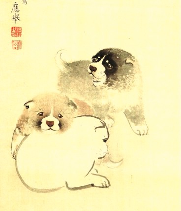 Koinu, Puppies 1784