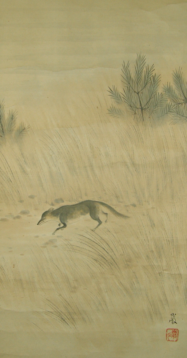 Fox and Silver Grass
