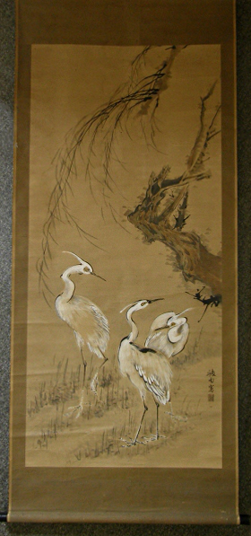 [ White Egrets ] Sagi Birds