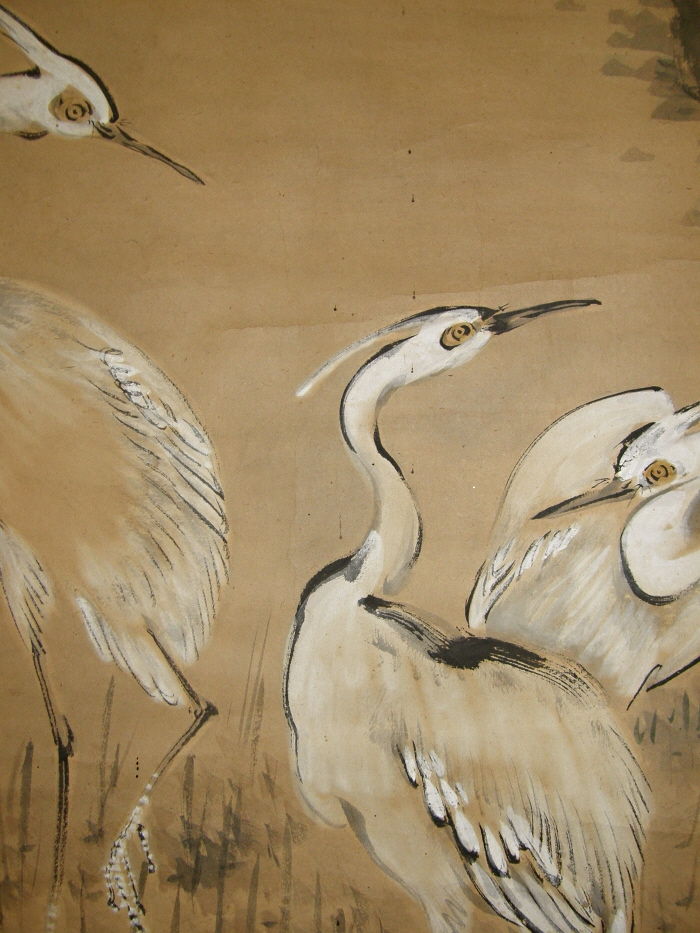 Japanese White Egrets