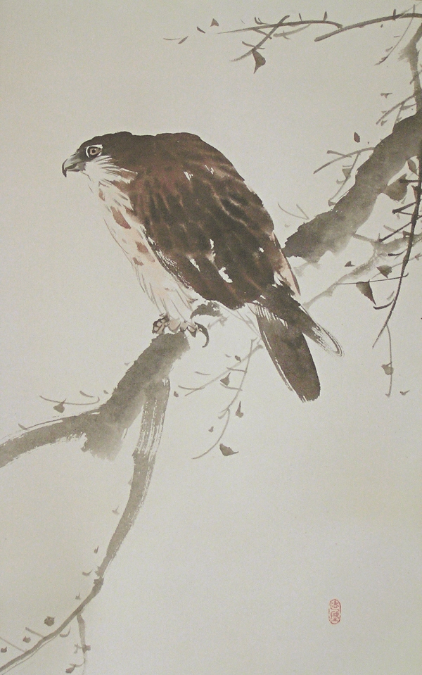 Taka bird (Hawk) is painted artistically