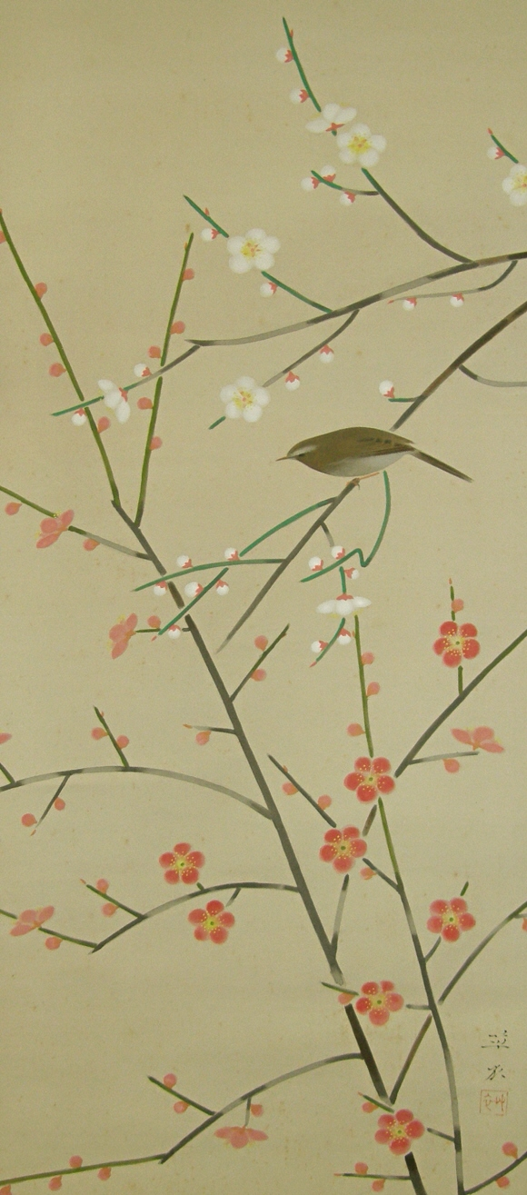 Japanese Warbler on Ume Tree