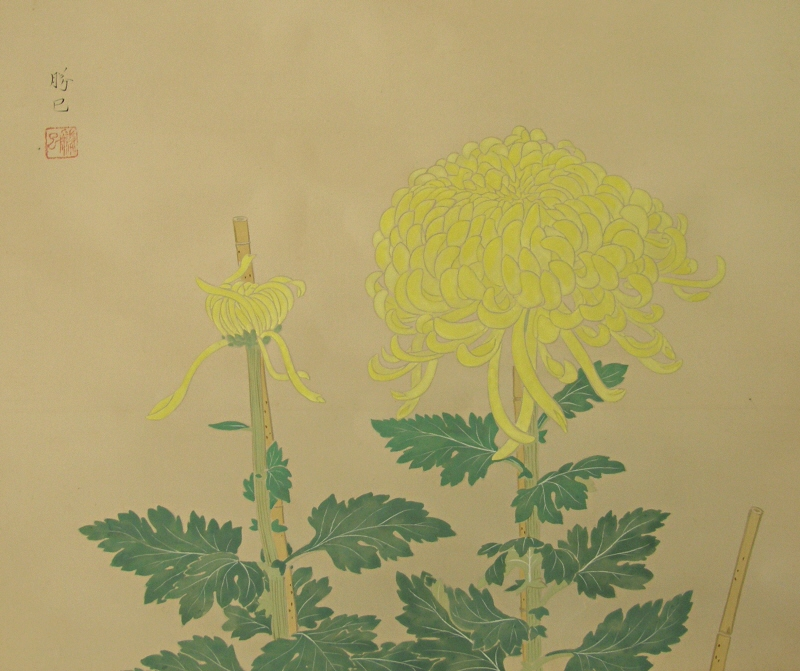 Japanese Kiku Flowers and Leaves