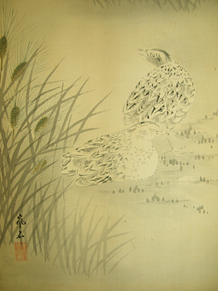 Barley and Japanese Quails