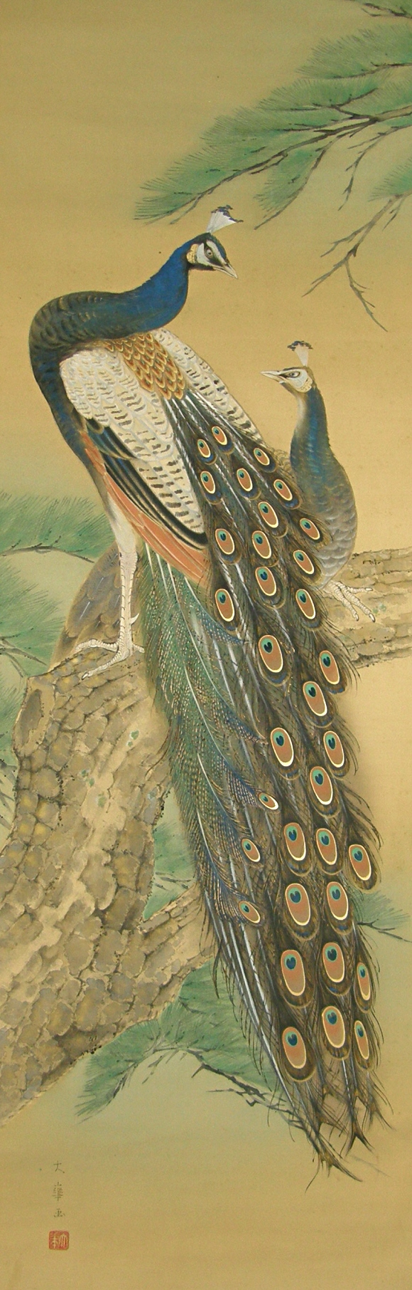 Japanese Peacocks on Matsu Tree Branch