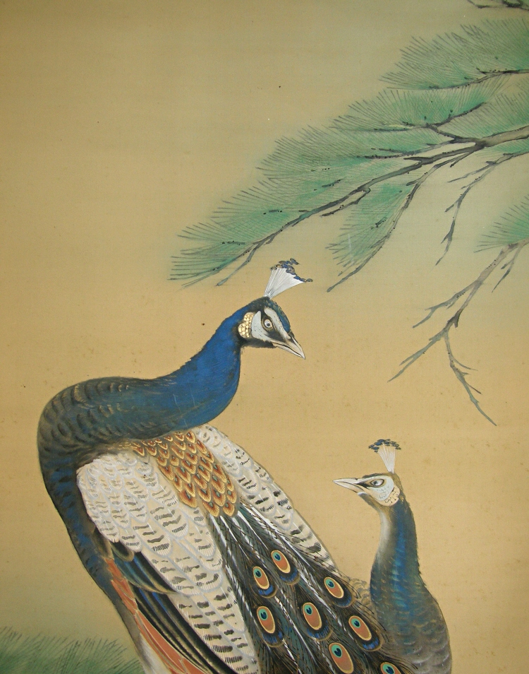 Japanese Peacock and Peahen (Kujaku)