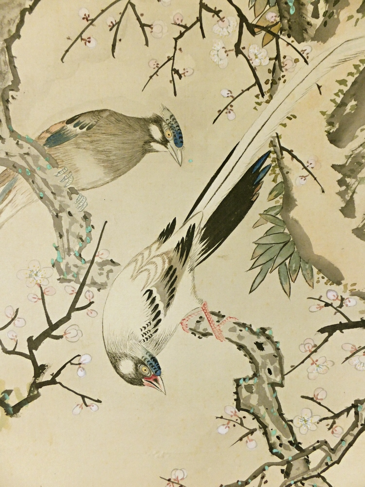 White Ume Flowers & Long-Tailed Cock Birds